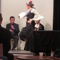 Flamenco y Solera
